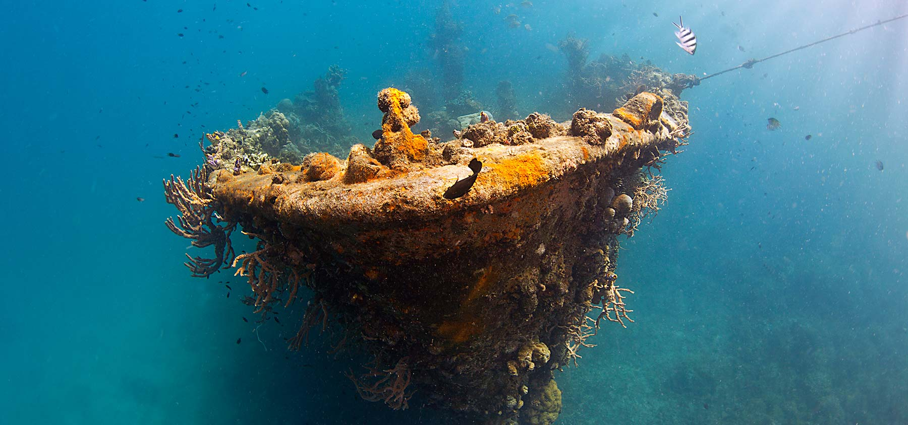 Historic sunken ship of Coron