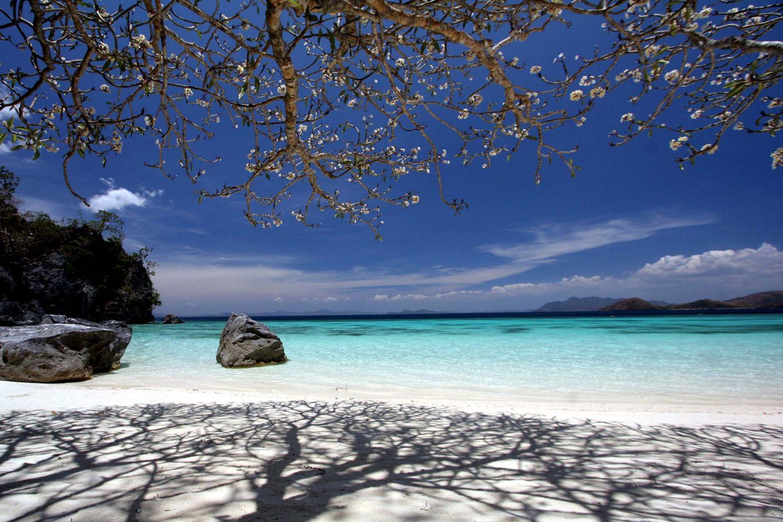 Malcapuya Island Island Escapade
